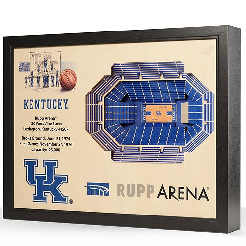 Kentucky Wildcats StadiumViews 3D Wall Art