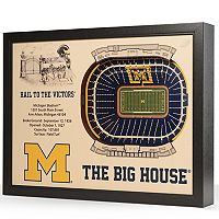 Michigan Wolverines StadiumViews 3D Wall Art