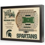 Michigan State Spartans StadiumViews 3D Wall Art