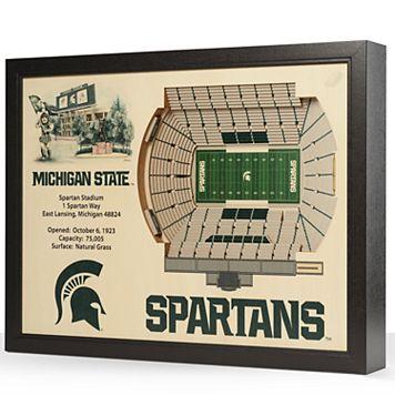 Michigan State Spartans StadiumViews 3D Wall Art