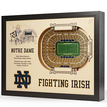 Notre Dame Fighting Irish StadiumViews 3D Wall Art