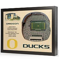 Oregon Ducks StadiumViews 3D Wall Art