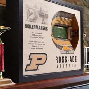 Purdue Boilermakers StadiumViews 3D Wall Art