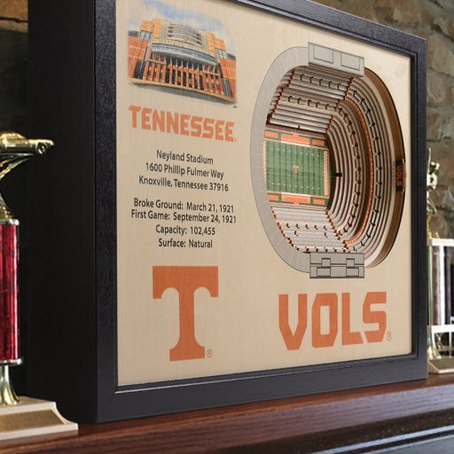 Tennessee Volunteers StadiumViews 3D Wall Art