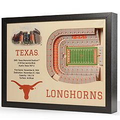 Texas Longhorns StadiumViews 3D Wall Art