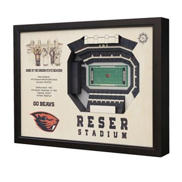 Oregon State Beavers StadiumViews 3D Wall Art