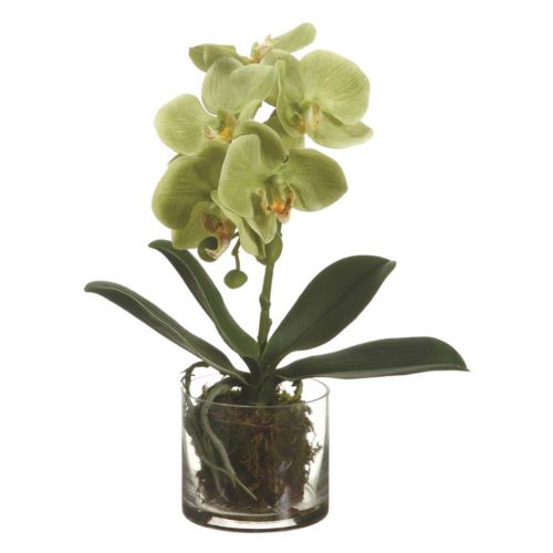 Phalaenopsis 13-inch Artificial Flower Arrangement