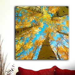 ''Aspen Up'' Canvas Wall Art