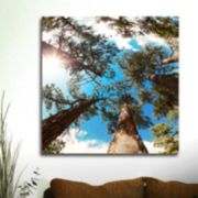 ''Through The Pines'' Canvas Wall Art