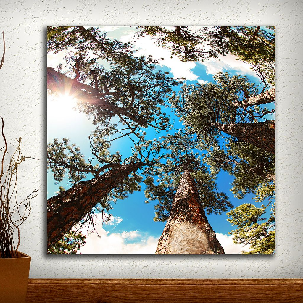 ''Through the Pines'' Wall Art