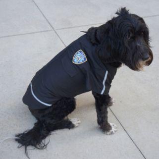 Royal Animals NYPD Woven Dog Shirt