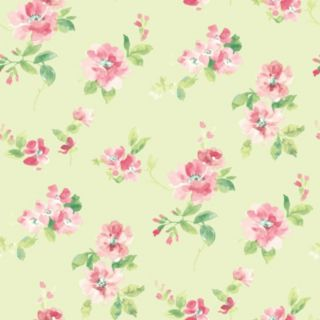 Brewster Home Fashions Captiva Floral Toss Wallpaper