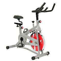 Sunny Health & Fitness Upright Exercise Bike (SF-B1421)