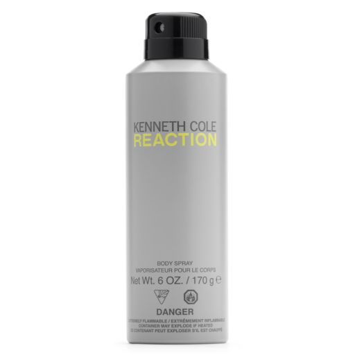 Kenneth Cole Reaction Men's Body Spray