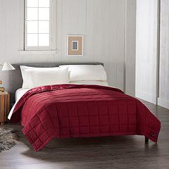 Cuddl Duds Down Alternative Blanket