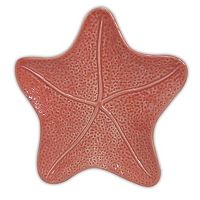 Celebrate Local Life Together Coastal Starfish 7-in. Appetizer Plate