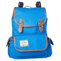 Chicago Cubs It's a Cinch Backpack