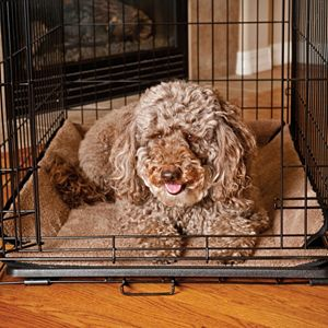 K&H Pet Memory Foam Pet Crate Pad