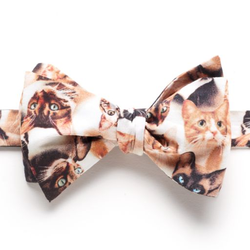 Men's Bow Tie Tuesday Patterned Self-Tie Bow Tie