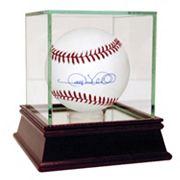 Steiner Sports Gary Sheffield Autographed Baseball