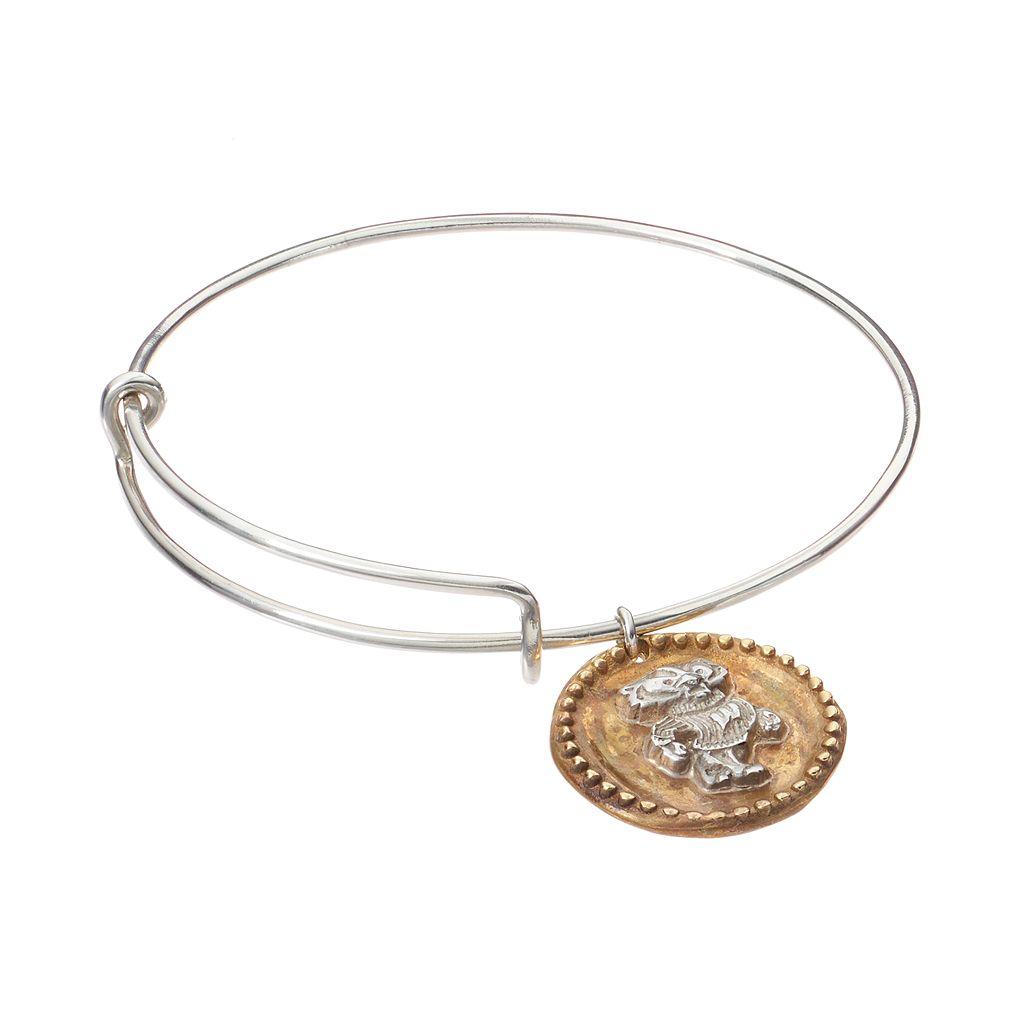 Dayna U Sterling Silver Wisconsin Badgers Antiqued Coin Bangle Bracelet