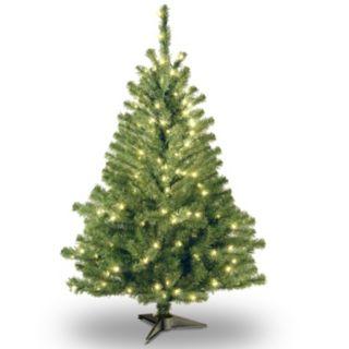 4-ft. Pre-Lit Kincaid Spruce Artificial Christmas Tree