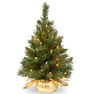 24-in. Pre-Lit Majestic Fir Artificial Christmas Tree & Gold Cloth Bag