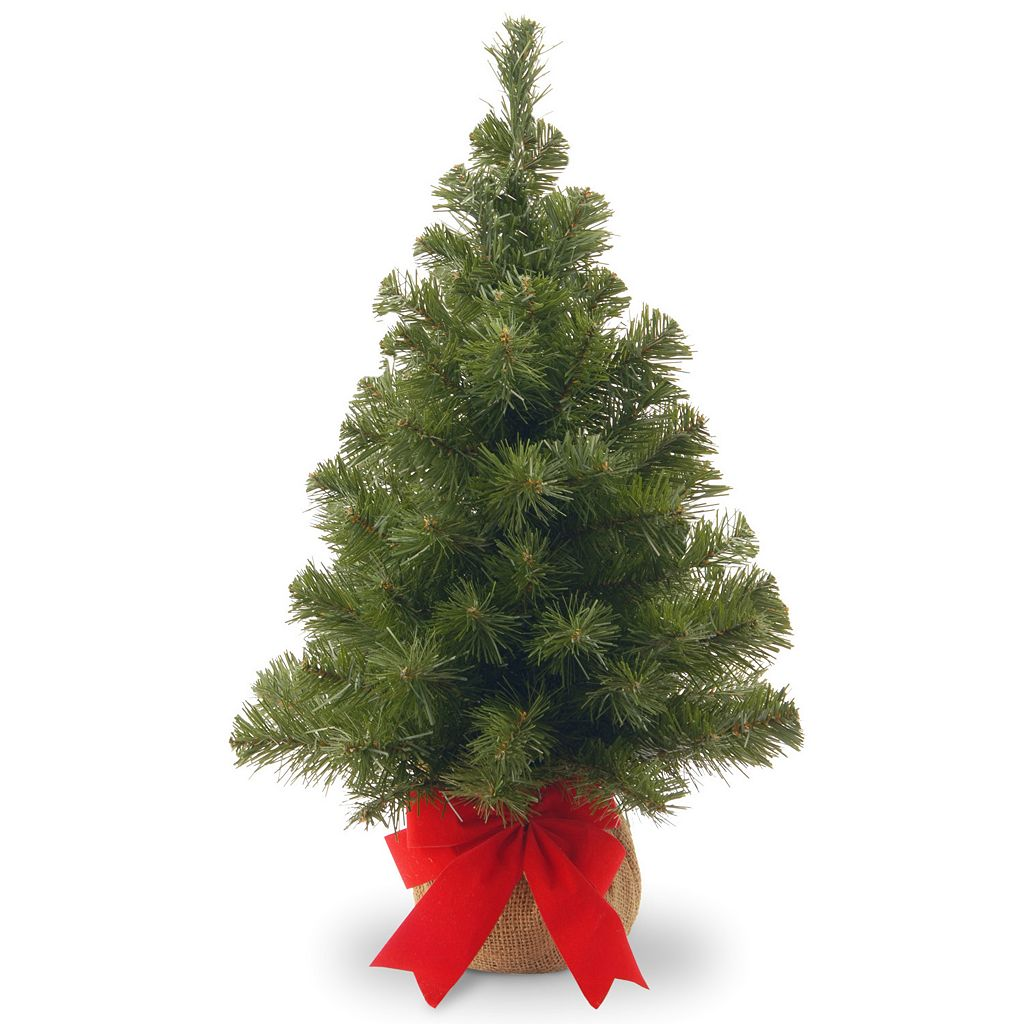 2-ft. Noble Spruce Artificial Christmas Tree
