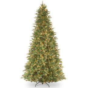 12-ft. Pre-Lit ''Feel-Real'' Tiffany Fir Artificial Christmas Tree