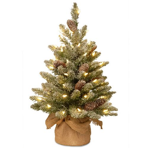 2-ft. Pre-Lit LED Snowy Concolor Fir Christmas Tree in Burlap