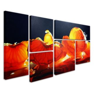Trademark Fine Art ''Mandarin Orange'' 6-pc. Wall Art Set