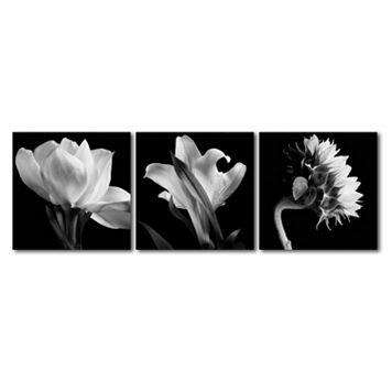 Trademark Fine Art ''Flower Triptych'' 3-pc. Wall Art Set
