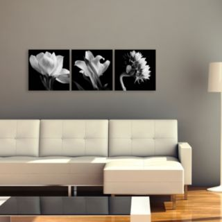 Trademark Fine Art ''Flower Triptych'' 3-pc. Wall Art Set
