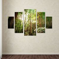 Trademark Fine Art ''Muir Woods'' 5 pc Wall Art Set