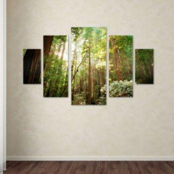 Trademark Fine Art ''Muir Woods'' 5-pc. Wall Art Set