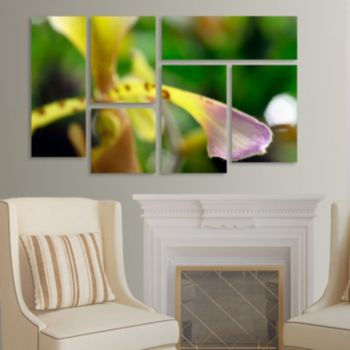 Trademark Fine Art ''To Touch An Orchid'' 6-pc. Wall Art Set