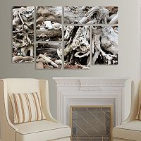 Trademark Fine Art ''Drift Wood'' 5-pc. Wall Art Set
