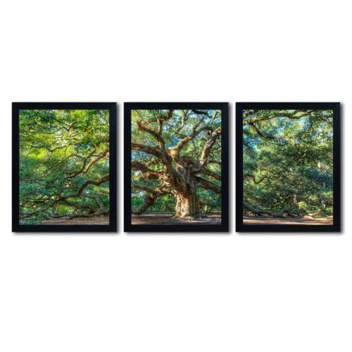 "Trademark Fine Art ""Angel Oak Charleston"" 3-pc. Framed Wall Art Set"