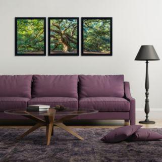 Trademark Fine Art ''Angel Oak Charleston'' 3-pc. Framed Wall Art Set