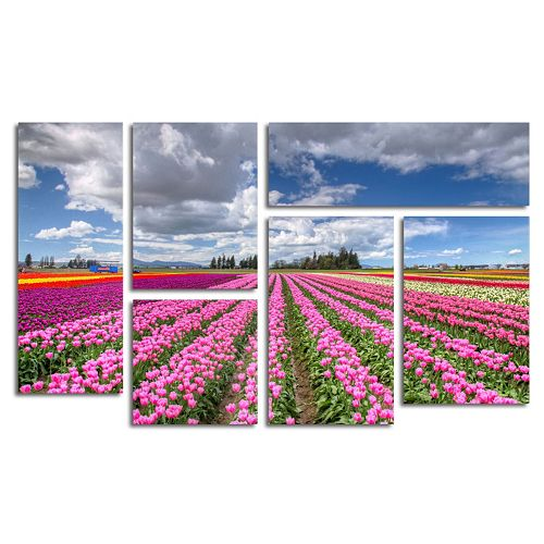 Trademark Fine Art ''Tulip Field'' 6-pc. Wall Art Set