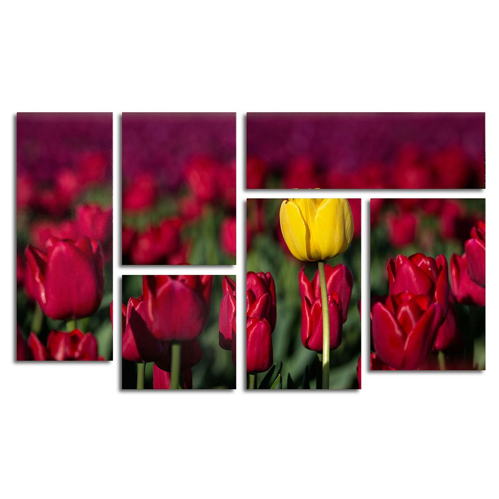 Trademark Fine Art ''Yellow Tulip'' 7-pc. Wall Art Set