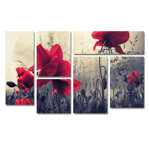 Trademark Fine Art ''Red For Love'' 6-piece Canvas Wall Art Set