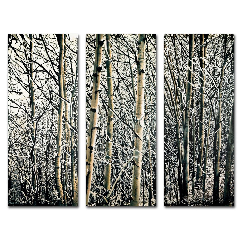 3 Piece Wall Art Set fine art ''aspen winter'' 3-piece canvas wall art set
