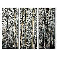 Trademark Fine Art ''Aspen Winter'' 3-piece Canvas Wall Art Set