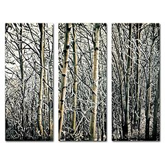 Trademark Fine Art ''Aspen Winter'' 3-piece Canvas Wall Art Set