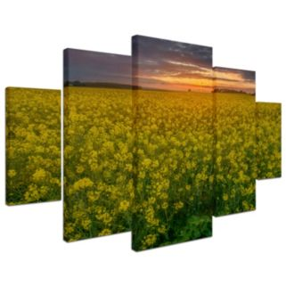 Trademark Fine Art ''Yellow Planet'' 5-piece Canvas Wall Art Set