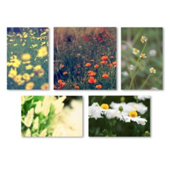 Trademark Fine Art ''Field of Flowers'' 6-piece Canvas Wall Art Set