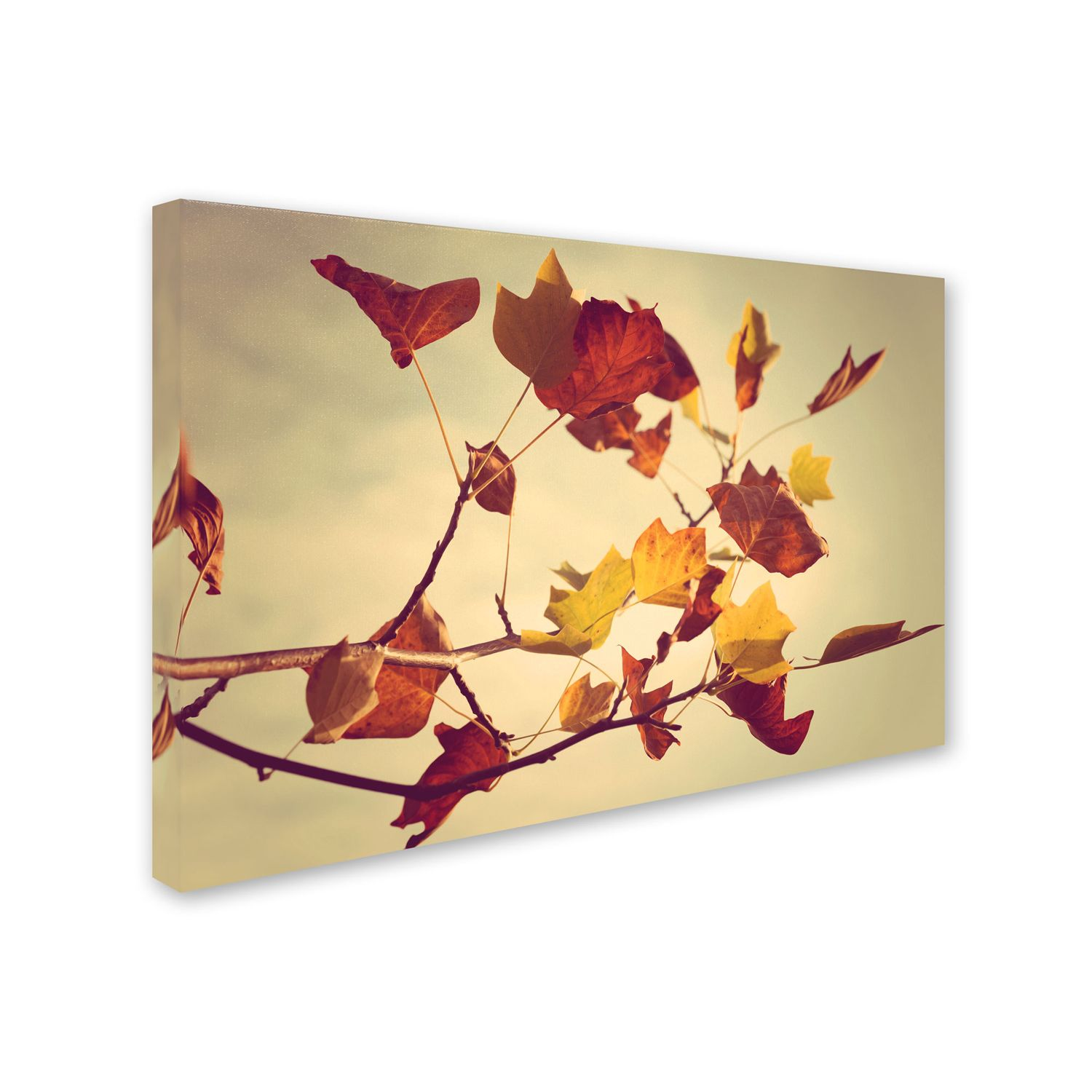 Orange Wall Decor, Home Decor | Kohl\'s