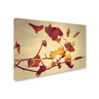 Trademark Fine Art ''Still Fall'' Canvas Wall Art by Philippe Sainte-Laudy