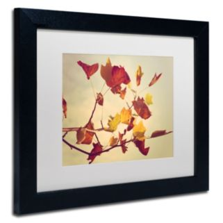 Trademark Fine Art ''Still Fall'' Matted Framed Wall Art by Philippe Sainte-Laudy